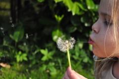 blowing-child-dandelion-790-828x550